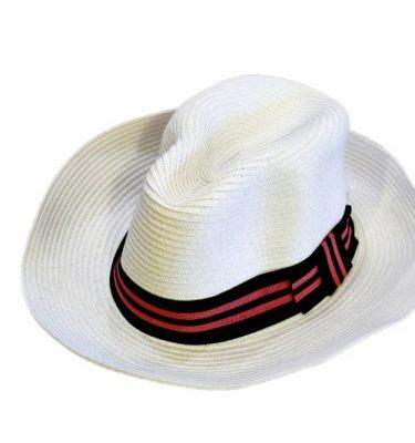 [:ro]Pălărie Panama 1[:en]Panama Hat 1[:]